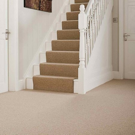 4744/Ryalux/Simply-Loops-Carpet
