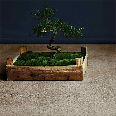 8414/Alternative-Flooring/Eco-Nature-Moccasin-Carpet