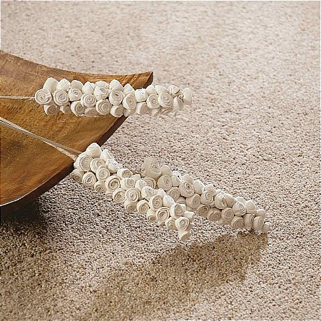 8862/Flooring-One/Ravendale-Elite-Carpet-Collection